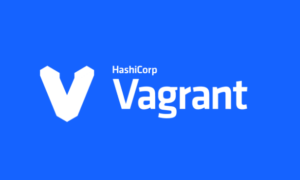 add new disk in vagrant