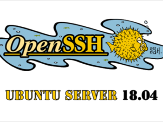 Open SSH - Ubuntu Server 18.04